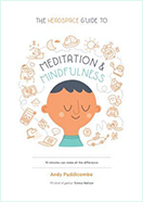 Book - The Headspace by Andy Puddicombe
